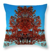 Rust And Sky 2 - Abstract Art Photo Throw Pillow
