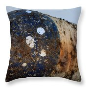 Rusted Buoy Throw Pillow