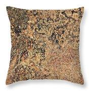 Rusted Metal Throw Pillow