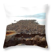 Rusted Pipe Thru Rock Path Throw Pillow