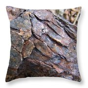Rusted Rust Throw Pillow