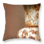 Rusted Urn Throw Pillow