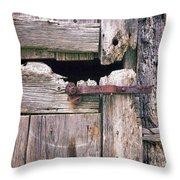 Rustic Barn Door Throw Pillow