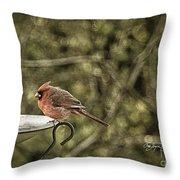 Rustic Cardinal Throw Pillow