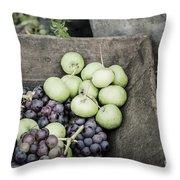 Rustic Fruit Throw Pillow