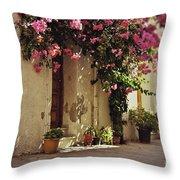 Rustic Greek Townhouse Throw Pillow
