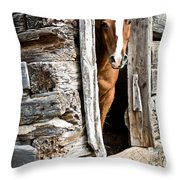 Rustic Horse Scene Throw Pillow