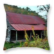 Rustic House II Throw Pillow