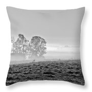 Rustic Morning In Black And White Throw Pillow