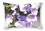 Rustic Planter Box Throw Pillow by Beverly Guilliams