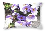 Rustic Planter Box Throw Pillow