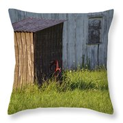 Rustic Pump House 20140718 Throw Pillow