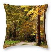 Rustic Road Throw Pillow