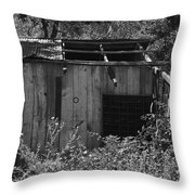 Rustic Shed 2 Throw Pillow