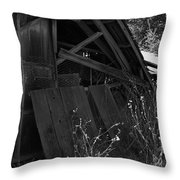 Rustic Shed 4 Throw Pillow