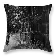 Rustic Shed 5 Throw Pillow