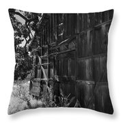 Rustic Shed 6 Throw Pillow