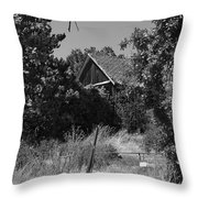 Rustic Shed 7 Throw Pillow