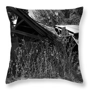 Rustic Shed 9 Throw Pillow