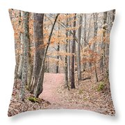Rustic Trails In January 2013 Throw Pillow