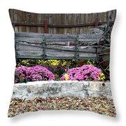 Rustic Wagon Throw Pillow