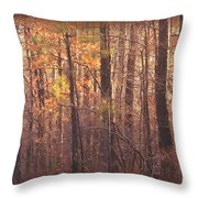 Rustic Winter Glow Throw Pillow