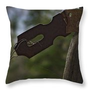 Rusty Hasp   #0005 Throw Pillow