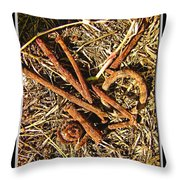 Rusty Nails Throw Pillow