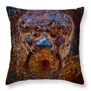 Rusty Relic Throw Pillow
