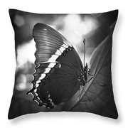 Rusty Tip Butterfly Black And White Throw Pillow