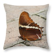 Rusty Tipped Page Butterfly Throw Pillow