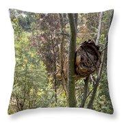 Rwandan Beehive Throw Pillow