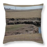 S Curve Creek Throw Pillow