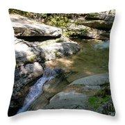 Sabbaday Brook Throw Pillow