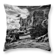 Sabellariid Worms Reef - 3  Throw Pillow