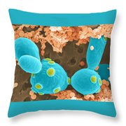 Saccharomyces Cerevisiae Sem Throw Pillow by Scimat