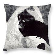 Sack Ninja Throw Pillow
