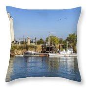Sacramento River Scene Throw Pillow