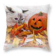 Sacred Cat Of Burma Halloween Throw Pillow