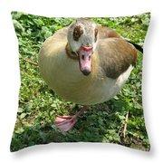 Sad Goose Throw Pillow