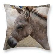 Sad Wild Donkey Throw Pillow