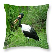Saddle Billed Stork-136 Throw Pillow