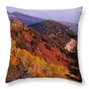 Saddle Mountain Autumn-sq Throw Pillow