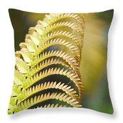 Sadleria Cyatheoides Amau Fern Maui Hawaii Throw Pillow