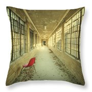 Sadly Acknowledged Throw Pillow