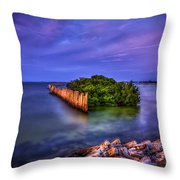 Safe Haven Throw Pillow by Marvin Spates