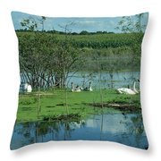 Safe In The Pond Throw Pillow
