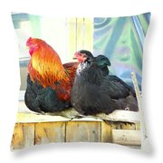 I'm Feeling So Safe Inside Our Shed With You  Throw Pillow