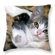 Safe Throw Pillow by Susan Leggett