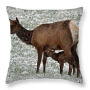 Safe Under Mom's Belly Throw Pillow